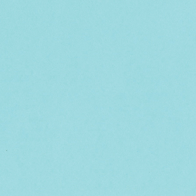ROBINS EGG light blue 12x12 heavy cardstock from Bazzill Card Shoppe line