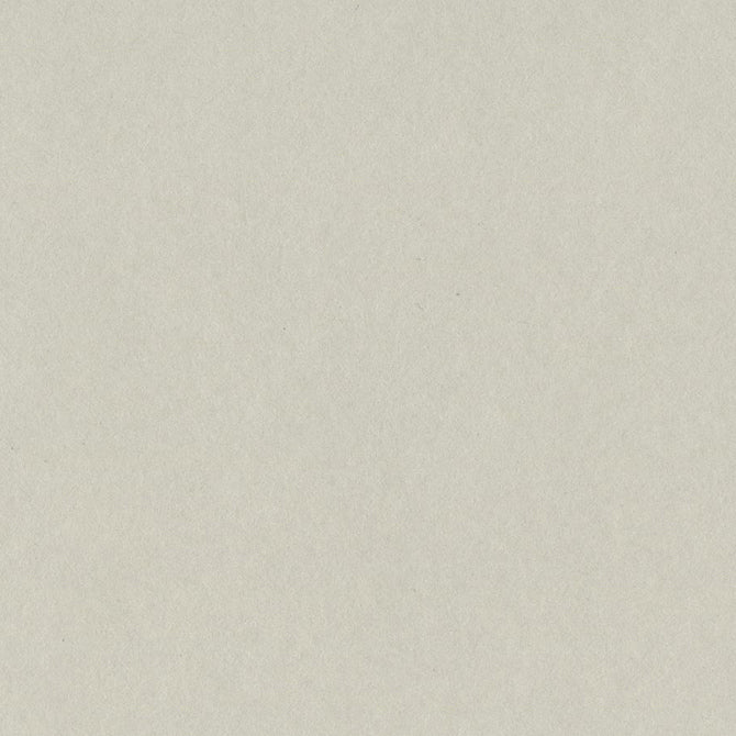 TAFFY light putty gray 12x12 heavy cardstock from Bazzill Card Shoppe collection
