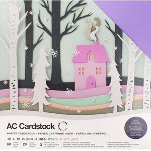 WINTER - cardstock variety pack - 60 ct - 12x12 inch - 80 lb - textured scrapbook paper - American Crafts