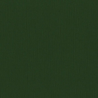 Bazzill Basics AVOCADO dark green cardstock - 12x12 inch - 80 lb - textured scrapbook paper
