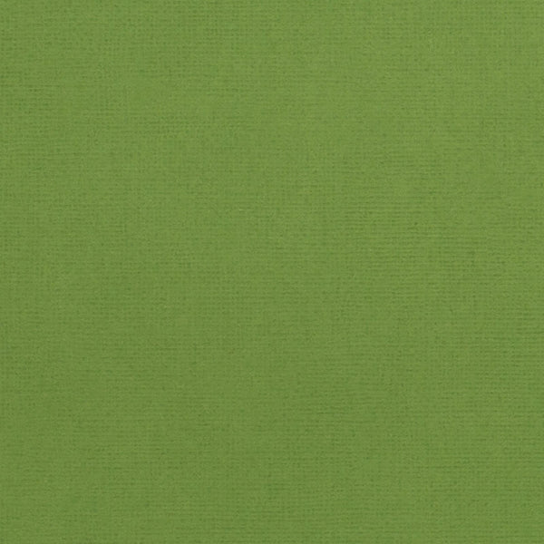 Spinach - green cardstock - 12x12  inch - 80 lb - textured scrapbook paper - American Crafts