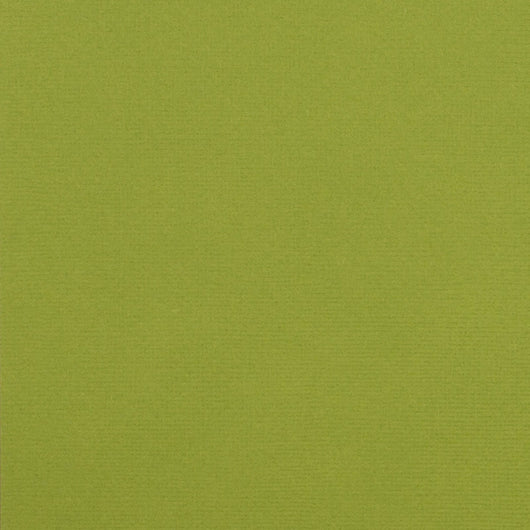 Leaf Color-12x12 inch-80 lb-textured cardstock-American Crafts