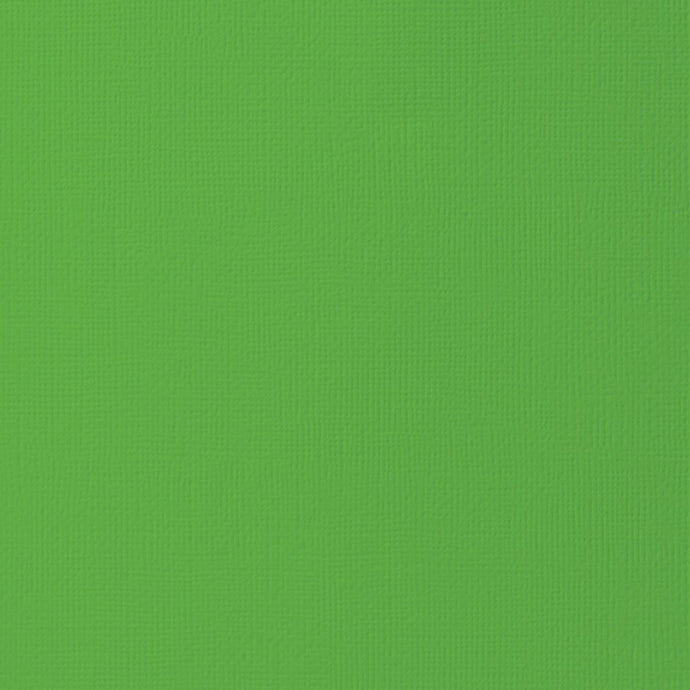 GRASS green cardstock - 12x12 inch - 80 lb - textured scrapbook paper - American Crafts