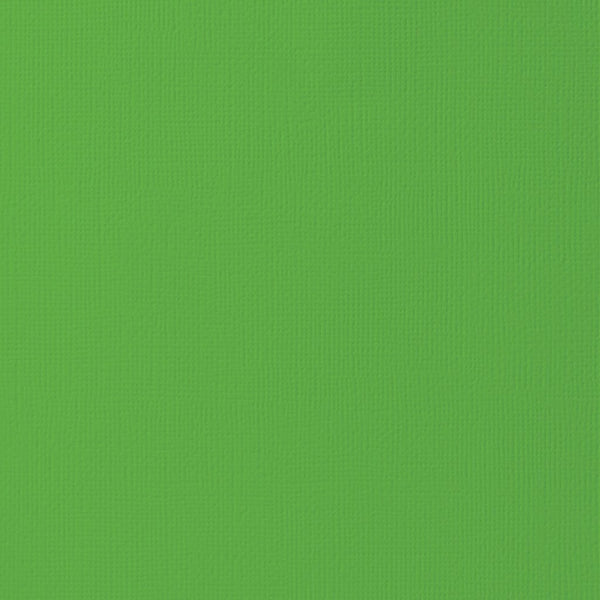 Grass Color-12x12 inch-80 lb-textured cardstock-American Crafts