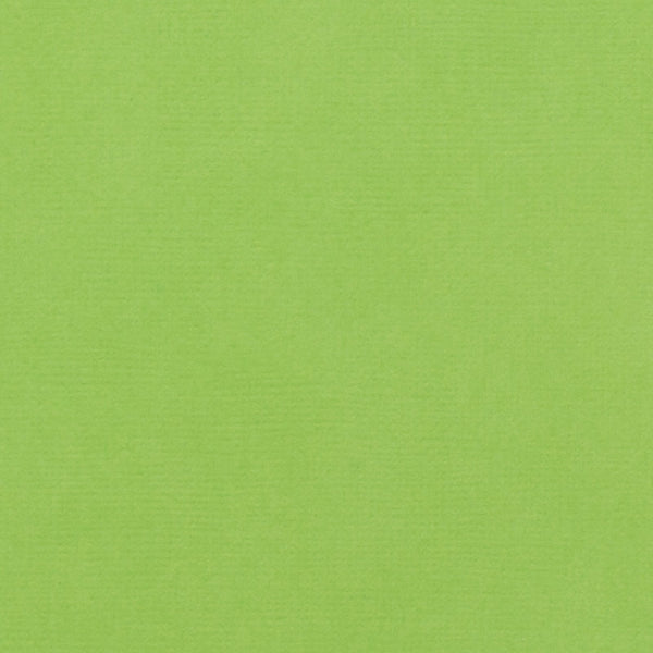 Cricket Green Cardstock - 12x12 inch - 80 lb - textured scrapbook paper - American Crafts