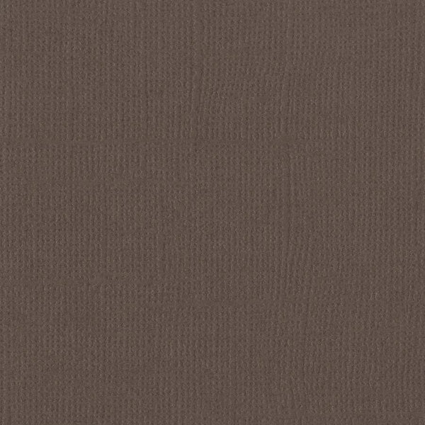 Bazzill Basics BARK brown cardstock - 12x12 inch - 80 lb - textured scrapbook paper