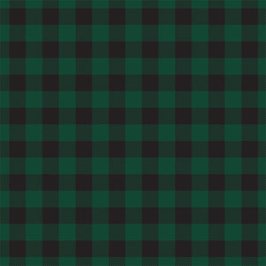 Reverse side - DARK GREEN Buffalo Plaid 12x12 double-sided cardstock from Carta Bella