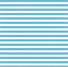 Load image into Gallery viewer, Poolside Stripe 12x12 cardstock from Echo Park Paper - blue and white - front side