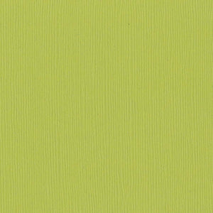 Bazzill GRANNY SMITH green cardstock - 12x12 inch - 80 lb - textured scrapbook paper