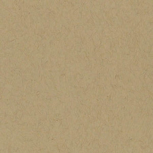 Bazzill Classics KRAFT cardstock - 12x12 - smooth - 80lb cover