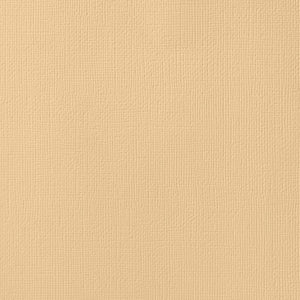 LATTE tan cardstock - 12x12 inch - 80 lb - textured scrapbook paper - American Crafts