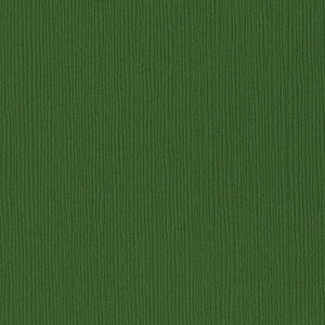 Bazzill Basics PATCH green cardstock - 12x12 inch - 80 lb - textured scrapbook paper
