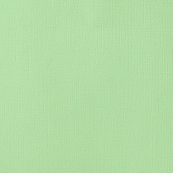 PEAPOD green cardstock - 12x12 inch - 80 lb - textured scrapbook paper - American Crafts