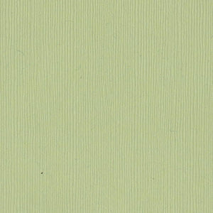 Bazzill Basics SPRING BREEZE - light green cardstock - 12x12 inch - 80 lb - textured scrapbook paper