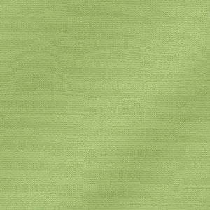 WILLOW GREEN Glimmer 12x12 Cardstock - from My Colors