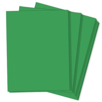 GAMMA GREEN Astrobrights 8.5 x 11 cardstock from Neenah Paper Co.