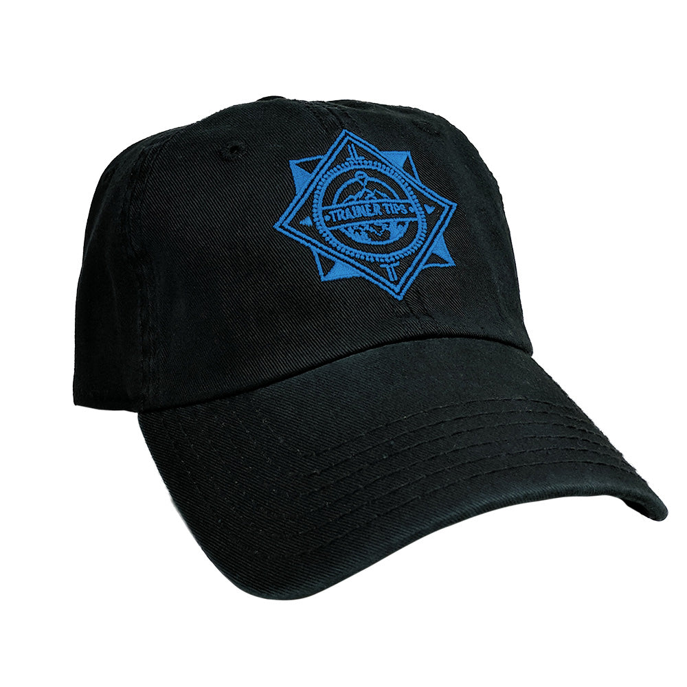 Team Mystic Blue Logo - Dad Hat