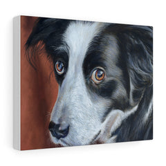Image of Border Collie Pastel Art - Canvas Print (4 Sizes)