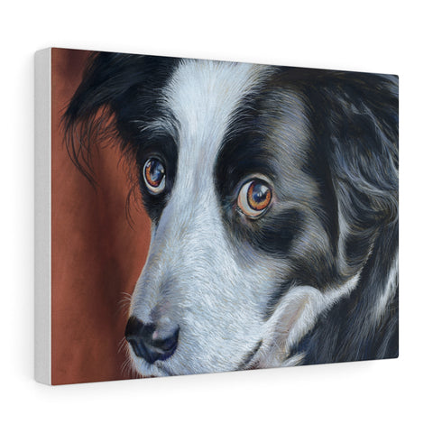 Border Collie Pastel Art - Canvas Print (4 Sizes)