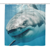 Image of Great White Shark Shower Curtain - Nana The Noodle