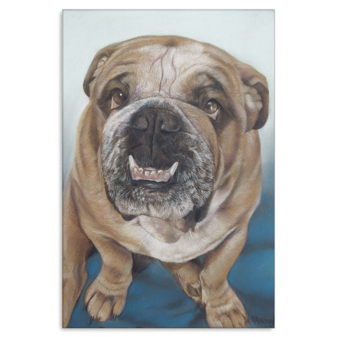 Bull Dog - Canvas (4 Sizes) - Nana The Noodle