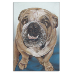 Image of Bull Dog - Canvas (4 Sizes)
