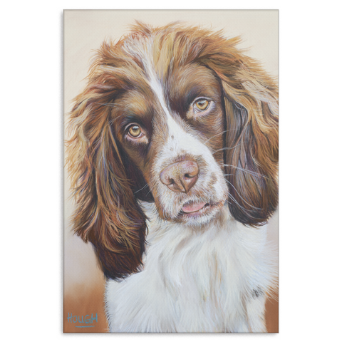 Sprocker Spaniel - Canvas ($ Sizes)