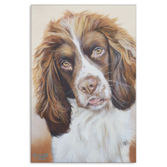 Image of Sprocker Spaniel - Canvas ($ Sizes)