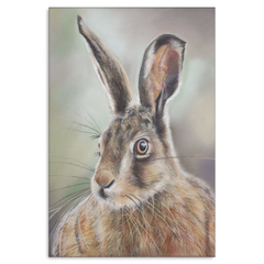 Image of The Hare