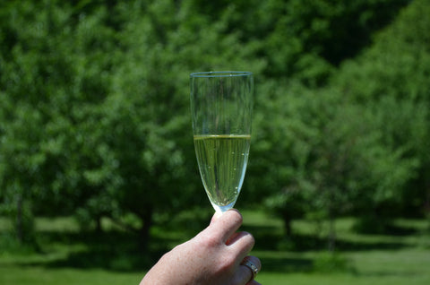 Hand holding champagne glass