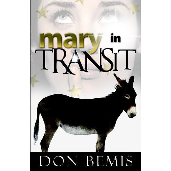 Mary in Transit