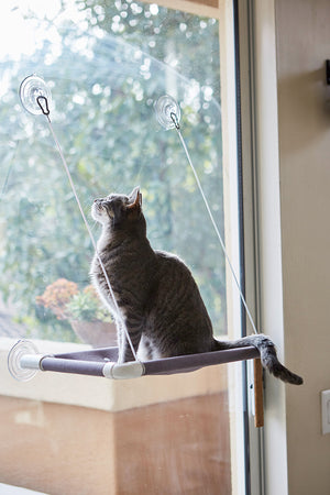 Purrlala Cat Window Perch Bed - Grey