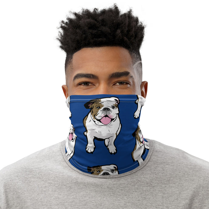 Blue Neck Gaiter English Bulldog