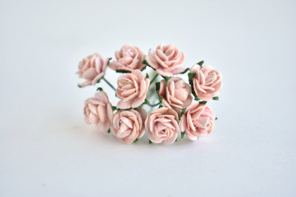 10- 10mm Blush Rose Mulberry Paper Flowers