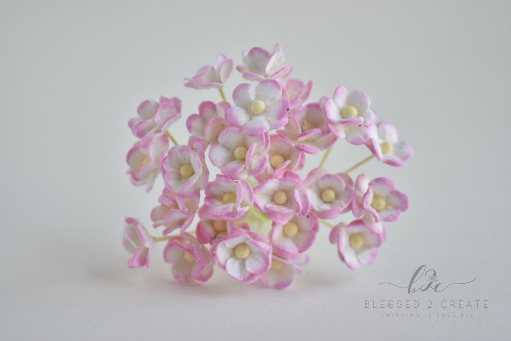 10 Itty Bitty White and Pink Sweetheart Blossom Mulberry Paper Flowers
