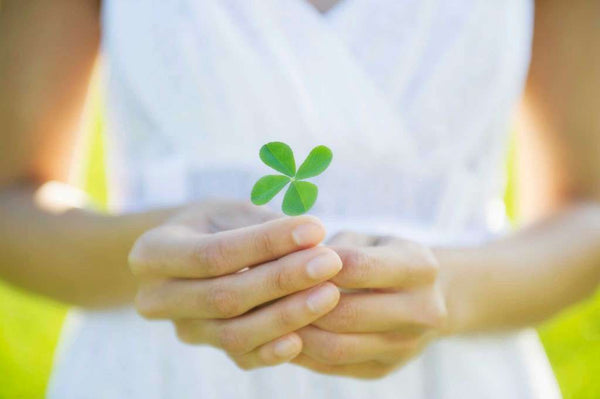THE STORIES BEHIND THE FOUR-LEAF CLOVER