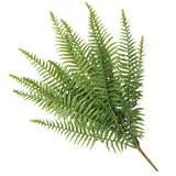 Artificial Fern (Lady Fern) 50cm UV Resistant