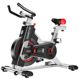 Powertrain Heavy Flywheel Exercise Spin Bike IS500 - Silver