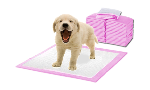 200 Pcs Puppy Pet Indoor Toilet Training Pads PINK