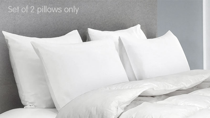 Duck-Down-Feather-Pillow-Twin-Set---1.3kg-KLK-afterpay-zippay