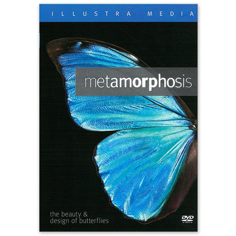 Metamorphosis: Beauty & Design of Butterflies