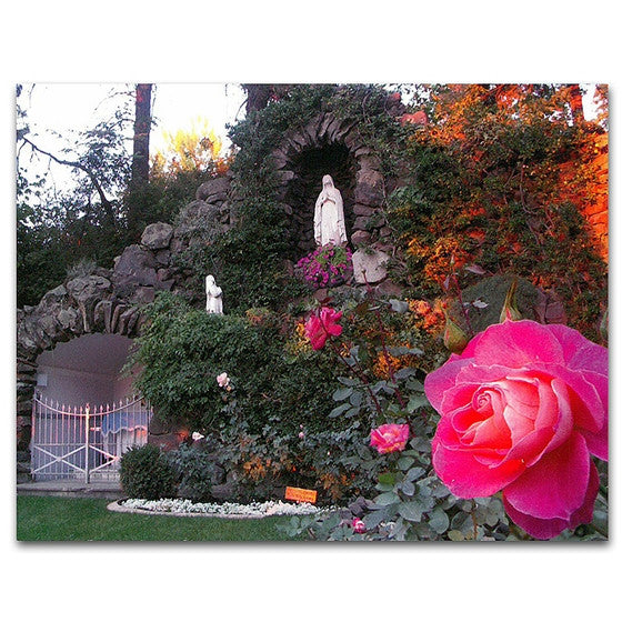 Mt. St. Michael Grotto Rose Postcard