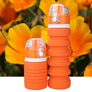 Cool Buddy™ Collapsible Silicone Water Bottle