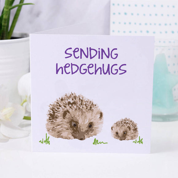 Sending Hedgehugs Thinking Of you Hedgehog Card