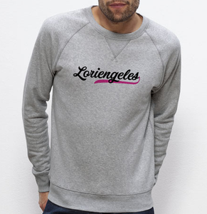 Sweat Loriengeles rose gris homme galette complete png