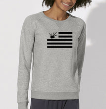 Sweat Drapeau Bzh