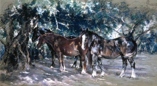 Dappled Sunlight-Giclee Print By Claire Verity...Equine Art/Horses.... Equine Canine Art is an online sales platform for horse art and dog art.