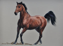Easy Grace Original Painting By Claire Verity/Equine Art/Horse racing. Equine Canine Art is an online sales platform for horse art and dog art.