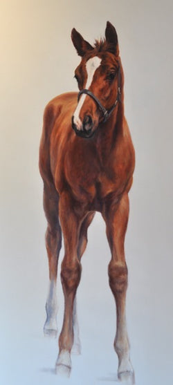 Frankel Foal-Claire Verity Equine Art/Fine Art Painting/Horse Racing.. Equine Canine Art is an online sales platform for horse art and dog art.