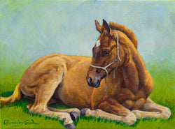 Midday Siesta.Fine Art Painting By Caroline Bromley-Gardner/Equine art Equine Canine Art is an online sales platform for horse art and dog art.